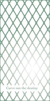 wire mesh3