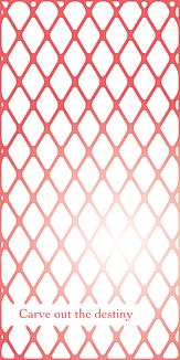 wire mesh2