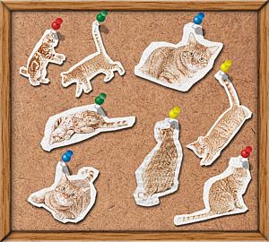 猫まみれ_コルクボード