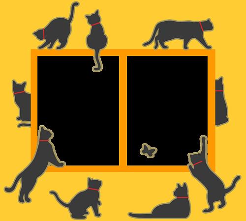 猫まみれ黄色