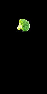 シンプル ブロッコリー