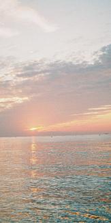 11月の夕陽