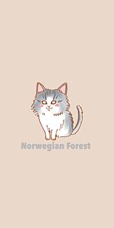 ノルウェージャンフォレストキャット