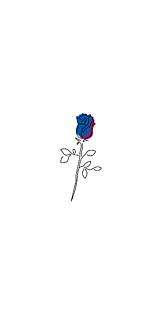 薔薇(ピンク&青)