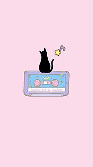 猫と音楽と