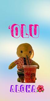'Oluケース