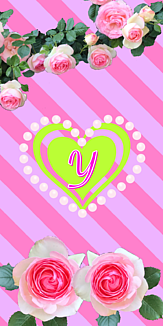 バラ♡イニシャル『Y』ボーダー