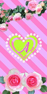 バラ♡イニシャル『A』ボーダー