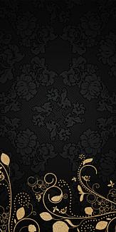 elegance -case-