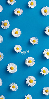 blue×flower