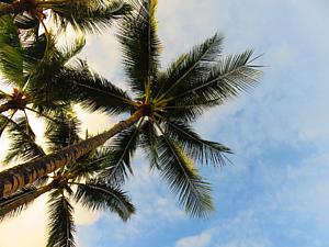 ハワイの空 スマホ手帳型ケース