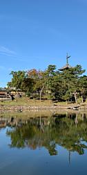 猿沢池に写る興福寺の五重塔