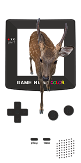 ゲームから鹿子
