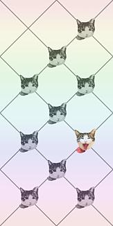 【SU】cat cat cat