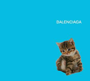 cat ブルージーン parody -type