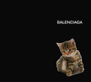 cat ブラック parody–type