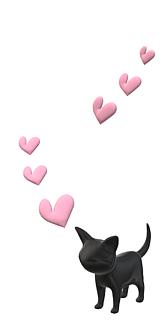 猫大好き♡
