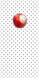 ハムスターとりんごのスマホケース