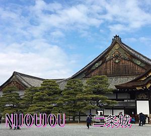日本の旅情シリーズ(5015)