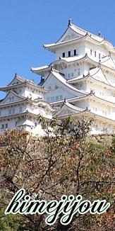 日本の旅情シリーズ(5019)