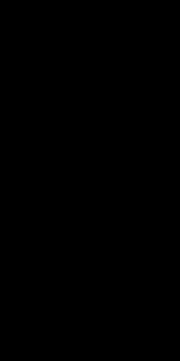 フラワーレース柄(ブラック)
