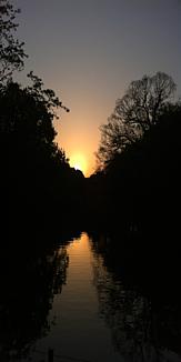 井の頭公園の夕暮れと反射