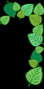 葉っぱフレーム