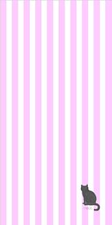 ピンクストライプ_猫