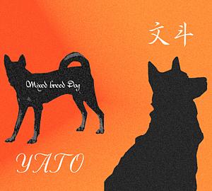 Mix犬 文斗