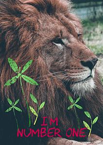 ナンバーワン(ライオン)