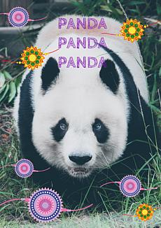 大好きなもふもふ(パンダ)