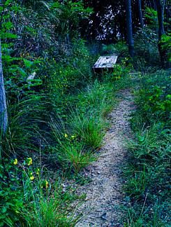 こころの腰掛(登山で見つけた椅子)