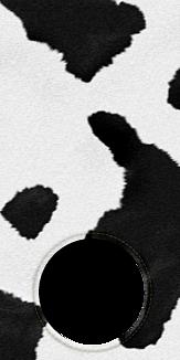 ケースフレーム0001 牛 アニマル 柄 動物