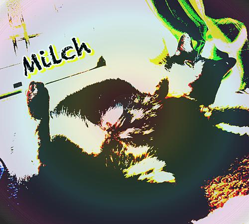 ミルヒスタイル(手帳フレーム)