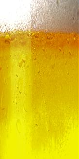 Beer (Pilsner)