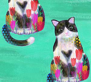 猫・ハチワレ
