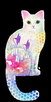 猫・白猫 クリア