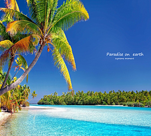emiemi オリジナル paradise on earth