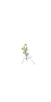 bouquet ribbon case