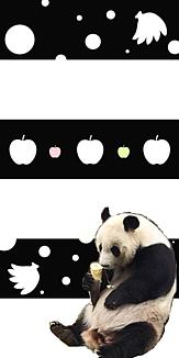 パンダ×フルーツ