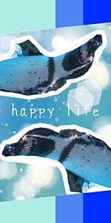 happy life1