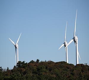 風車(昼)