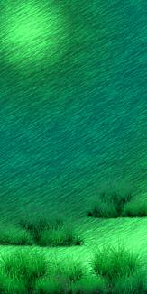 海の中の草たち