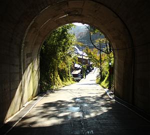トンネル 木漏れ日
