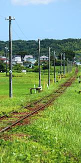 小湊鉄道線 草原 ローカル線