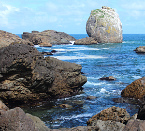 白岩(種差海岸)