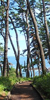 淀の松原 種差海岸