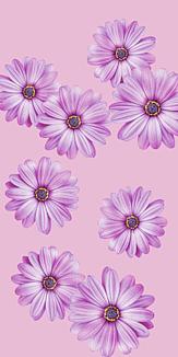 ピンクな花柄