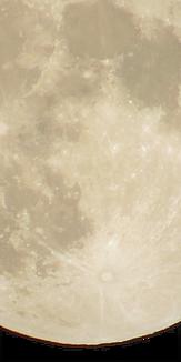 月_満月_下アップ_無