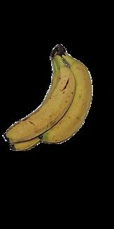 バナナ3_全_無